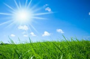 Sol og grass