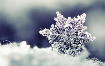 Vintergolf 25. november
