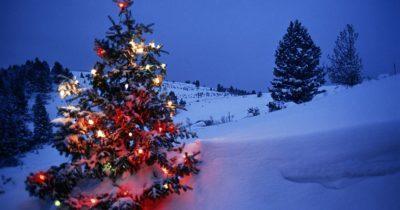 Vintergolf 16. desember
