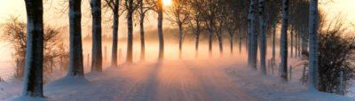 Vintergolf 2. desember